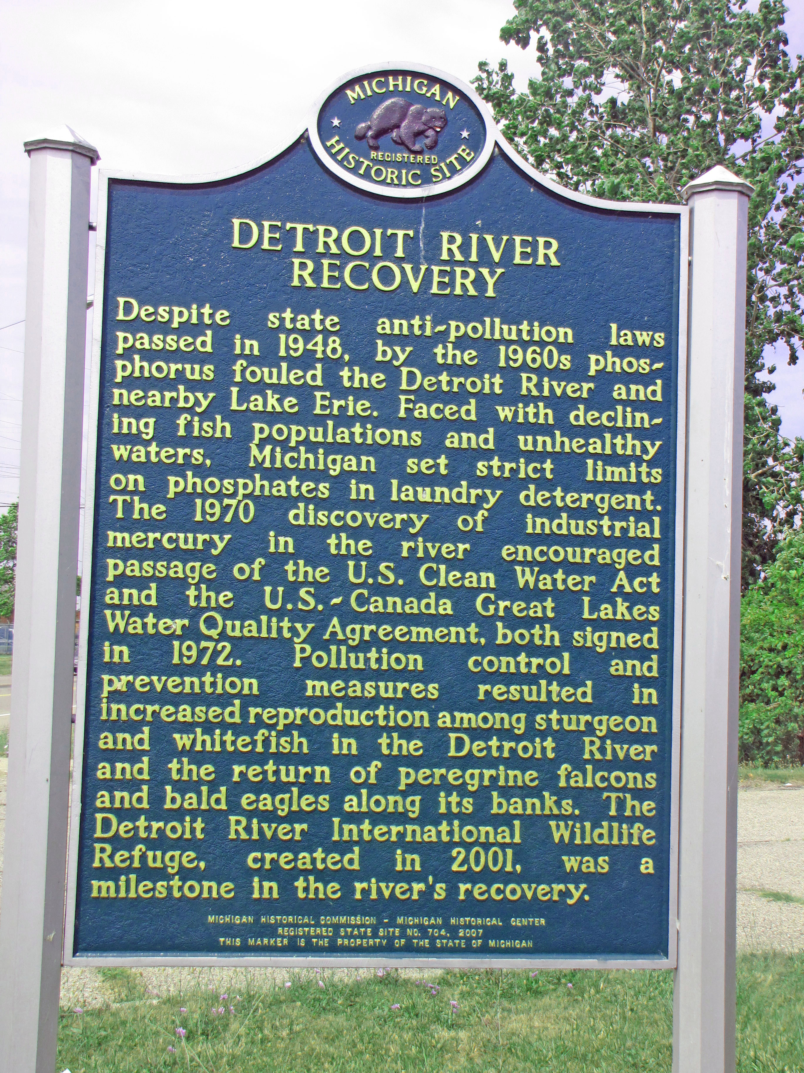 Detroit river recovery information designation